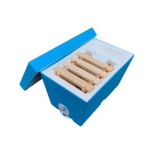 Mini Plus Styropor Beute einfach für Imkerei.